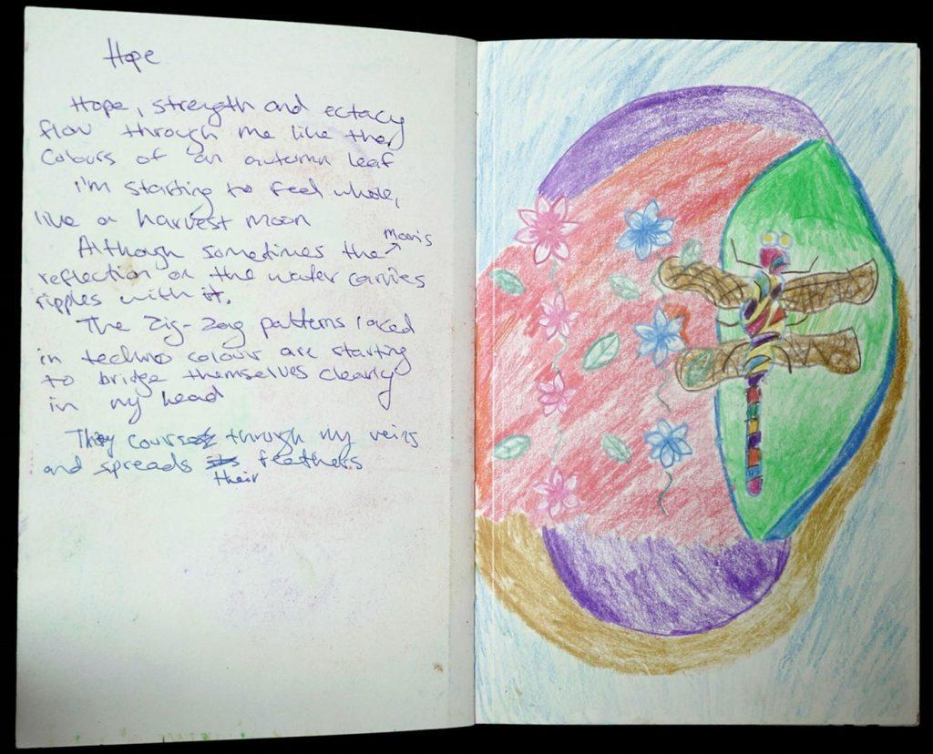 artwork: Hope the Dragonfly