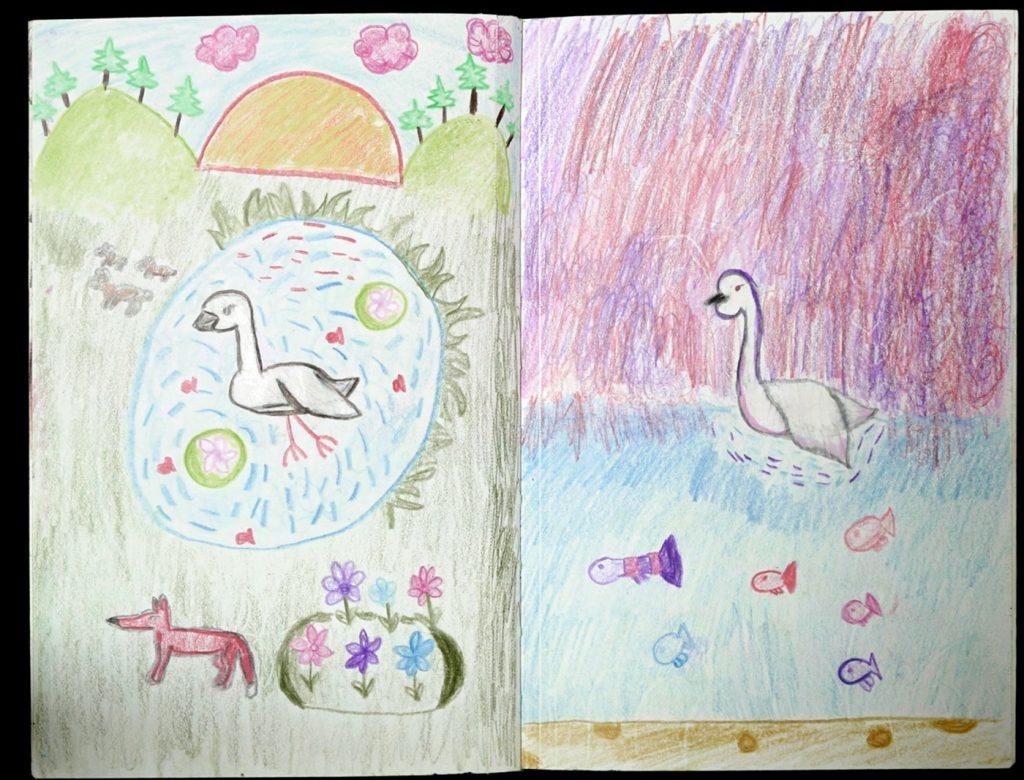 artwork: Trumpeter Swan
